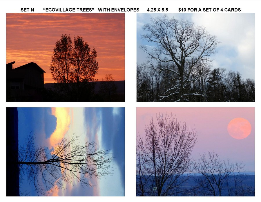 "Notecard Set N - ""Ecovillage Trees"""